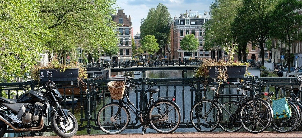 why should I study in Amsterdam